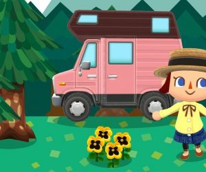Animal Crossing Pocket Camp Gardens