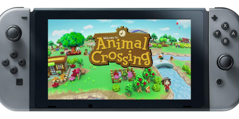 Animal Crossing Switch Wishes